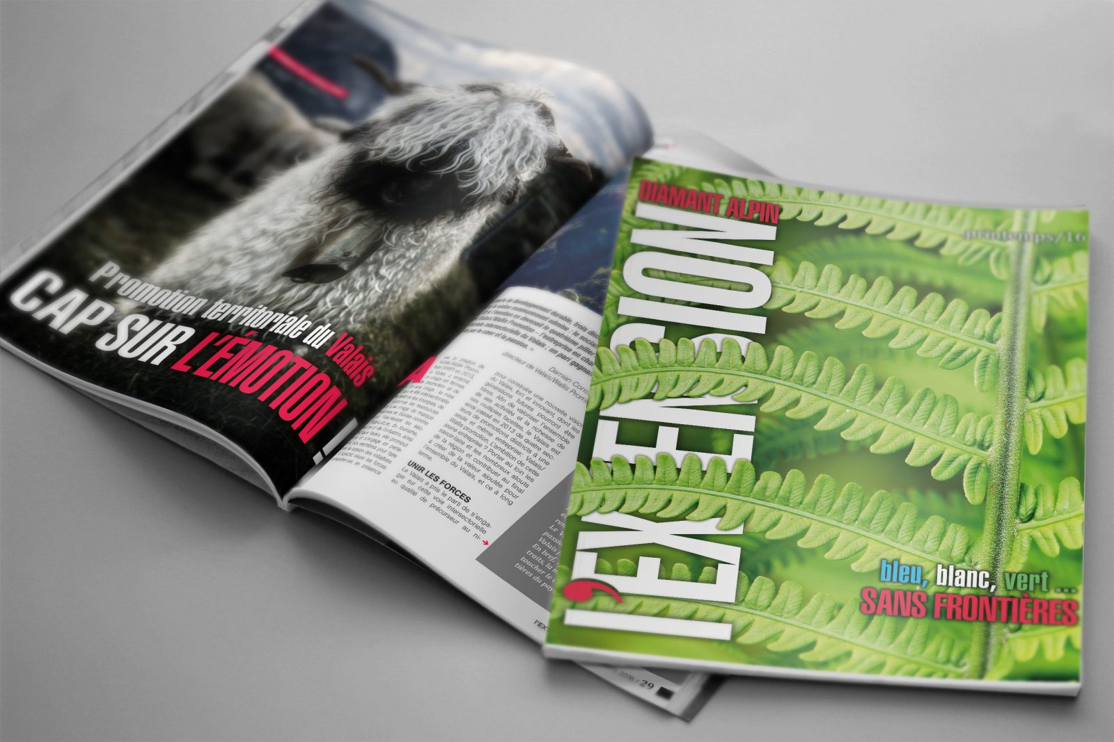 fredmuller-magazine-lextension-n55-printemps-2016-FEDRE-couv-valais-geneve-graphiste-freelance-web
